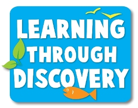 strategies for discovery learning Strategies determine the approach a teacher may take to achieve learning objectives strategies can be classed as direct, indirect, interactive, experiential, or independent the direct instruction strategy is highly teacher-directed and is among the most commonly used.