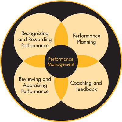 performance management system essay